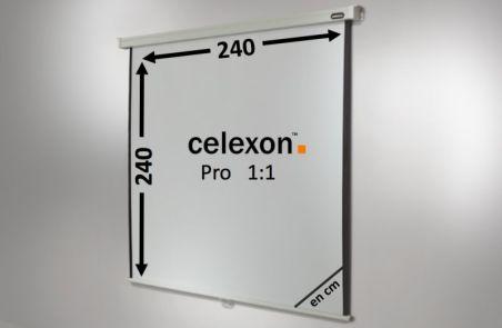 Ecran de projection celexon Manuel PRO 240 x 240 cm