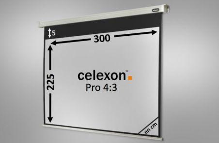 Ecran de projection celexon Motorisé PRO 300 x 225 cm
