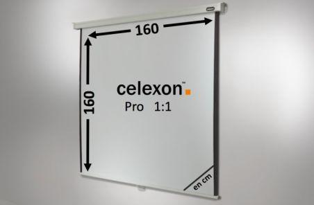 Ecran de projection celexon Manuel PRO 160 x 160 cm