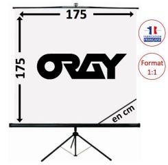 ECRAN ORAY - SCREEN 175x175 - TRE03B1175175