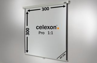 Ecran de projection celexon Manuel PRO 300 x 300 cm