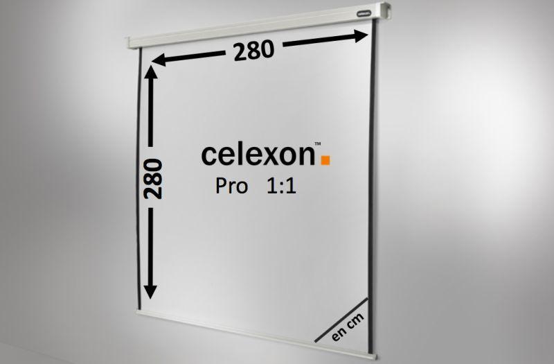 ecran de projection celexon motoris pro 280 x 280 cm achat vente celexon 1090091. Black Bedroom Furniture Sets. Home Design Ideas