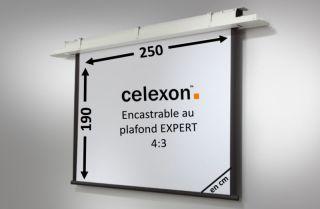 Ecran encastrable au plafond celexon Expert motorisé 250 x 190 cm