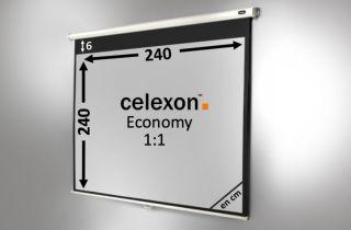 Ecran de projection celexon Manuel  Economy 240 x 240 cm