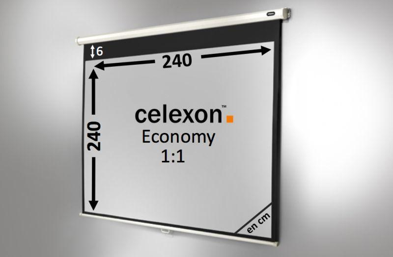 Ecran de projection celexon manuel economy 240 x 240 cm for Ecran de projection mural manuel