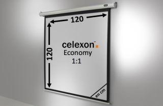 Ecran de projection celexon Economy Motorisé 120 x 120 cm