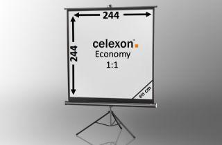 Ecran de projection sur pied celexon Economy 244 x 244 cm