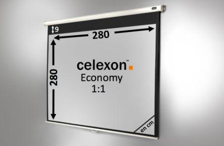 Ecran de projection celexon Manuel  Economy 280 x 280 cm