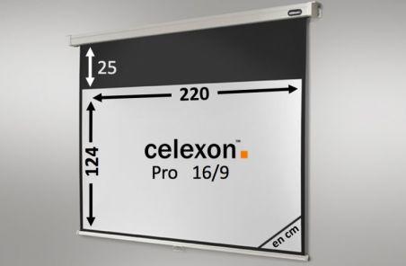 Ecran de projection celexon Manuel PRO 220 x 124 cm