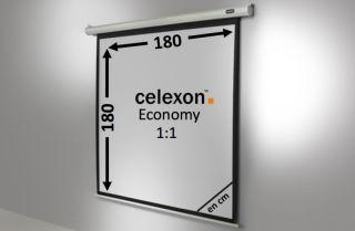 Ecran de projection celexon Economy Motorisé 180 x 180 cm