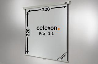 Ecran de projection celexon Manuel PRO 220 x 220 cm