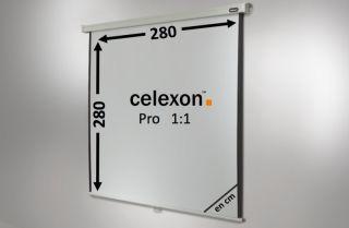 Ecran de projection celexon Manuel PRO 280 x 280 cm