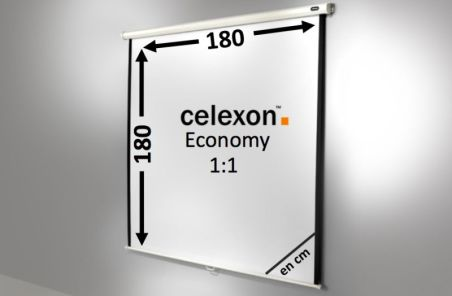 Ecran de projection celexon Manuel  Economy 180 x 180 cm