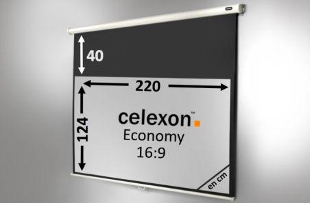 Ecran de projection celexon Manuel  Economy 220 x 124 cm