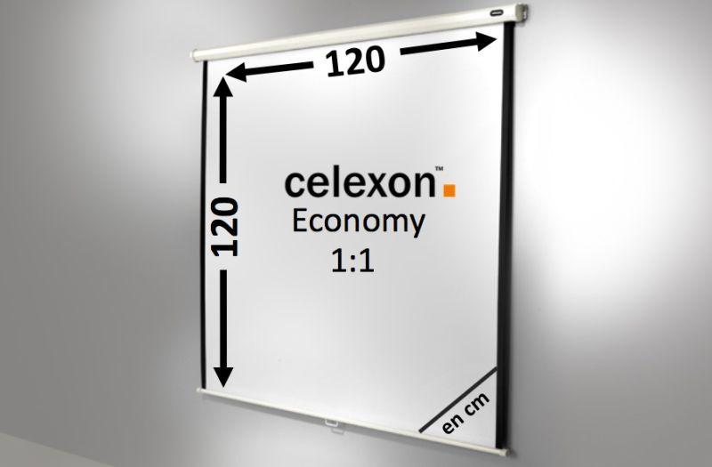 ecran de projection celexon manuel economy 120 x 120 cm achat vente celexon 1090028. Black Bedroom Furniture Sets. Home Design Ideas
