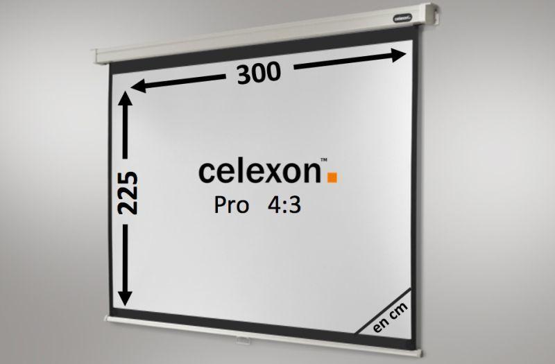 ecran de projection celexon manuel pro 300 x 225 cm achat vente celexon 1090055. Black Bedroom Furniture Sets. Home Design Ideas
