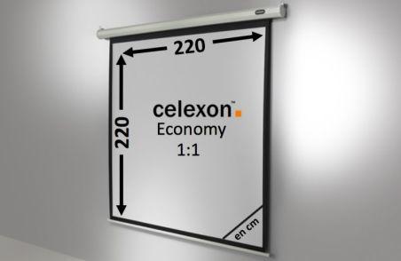 Ecran de projection celexon Economy Motorisé 220 x 220 cm