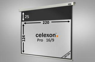 Ecran de projection celexon Motorisé PRO 220 x 124 cm