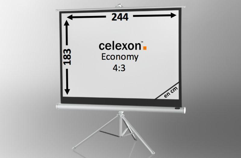ecran de projection sur pied celexon economy 244 x 138 cm white edition achat vente celexon. Black Bedroom Furniture Sets. Home Design Ideas
