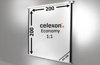 Ecran de projection celexon Manuel  Economy 200 x 200 cm
