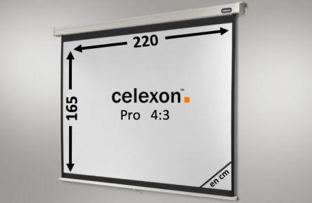Ecran de projection celexon Manuel PRO 220 x 165 cm