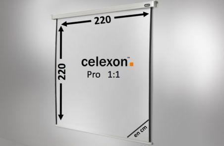 Ecran de projection celexon Motorisé PRO 220 x 220 cm
